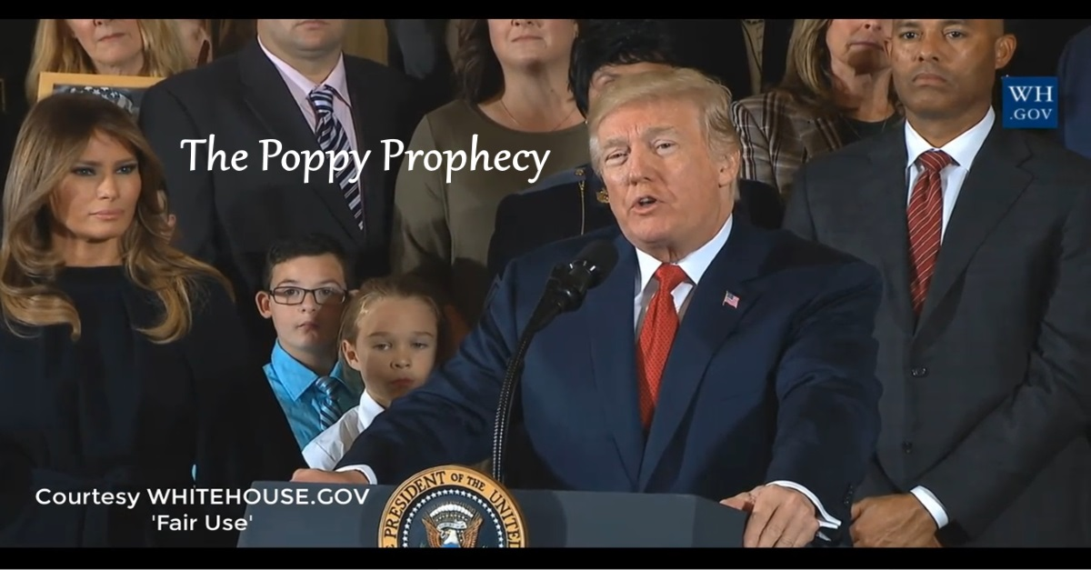 The Poppy Prophecy